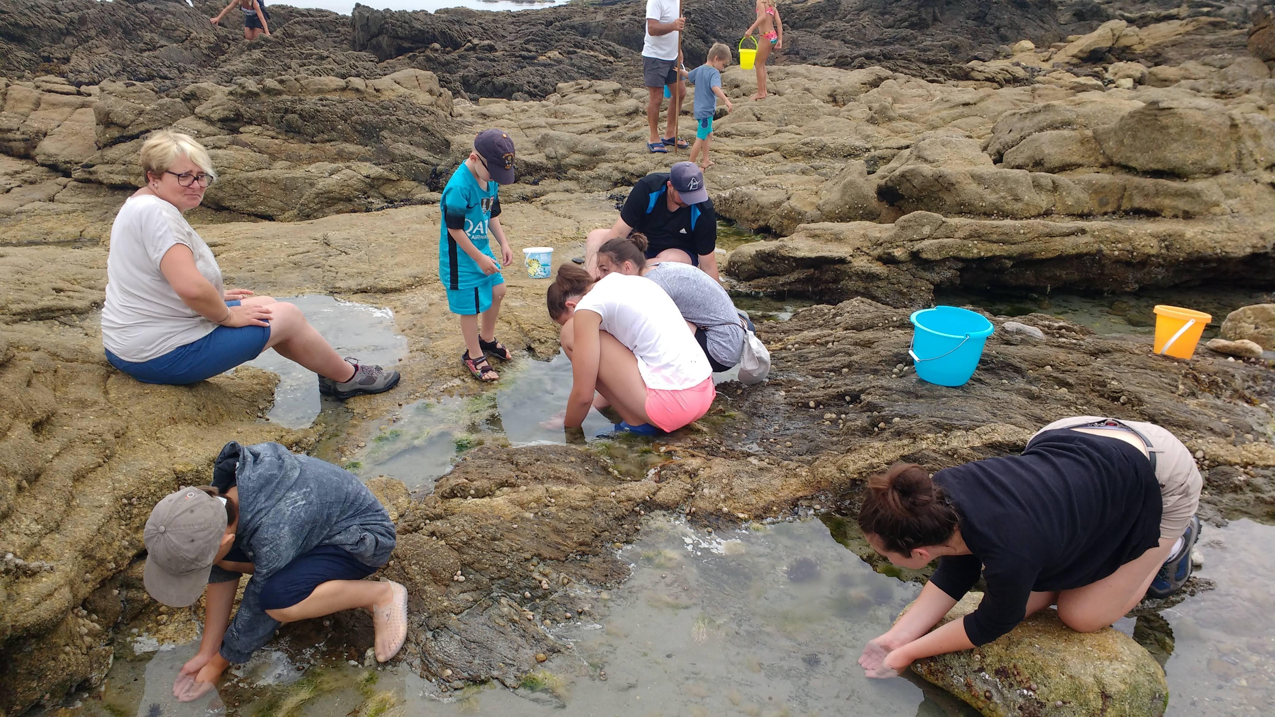 Visite guidée des roches à marée basse avec Marlène du camping de Trégunc