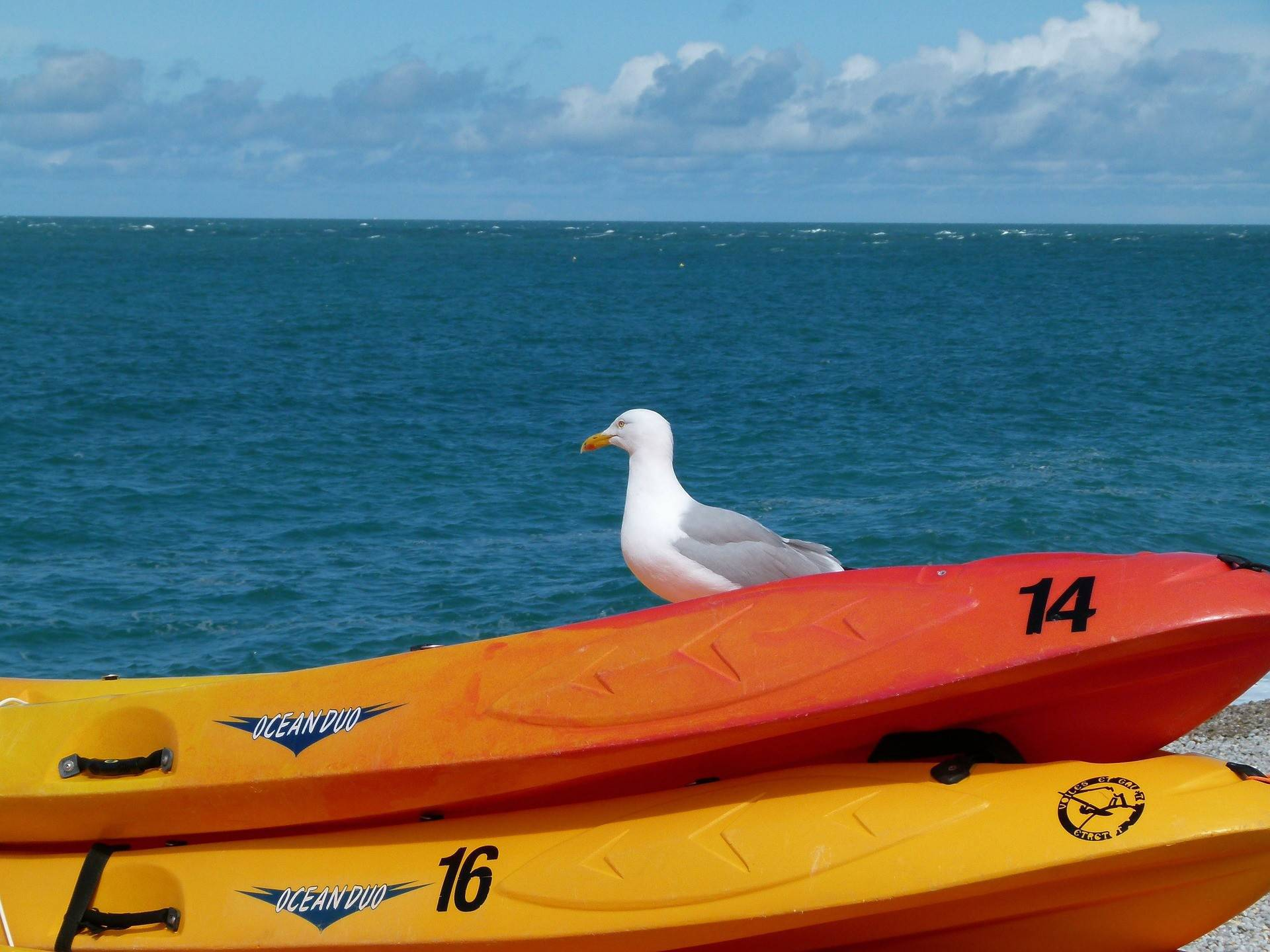 Le camping Le Suroît loue des kayaks de mer